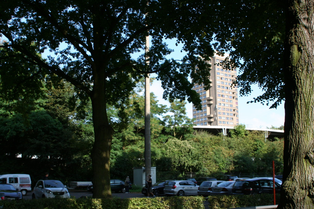 Olympia-Eiche. Im Hintergrund das Radstadion Köln
